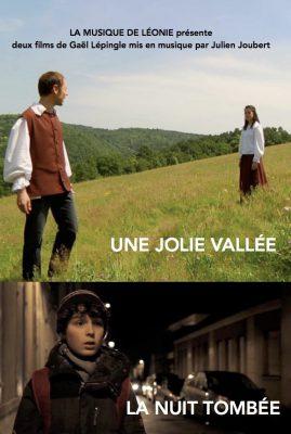 dvd_nuit_vallee